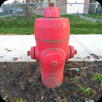 hydrants_of_vancouver@mastodon.social