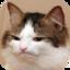 :chat_jpg: