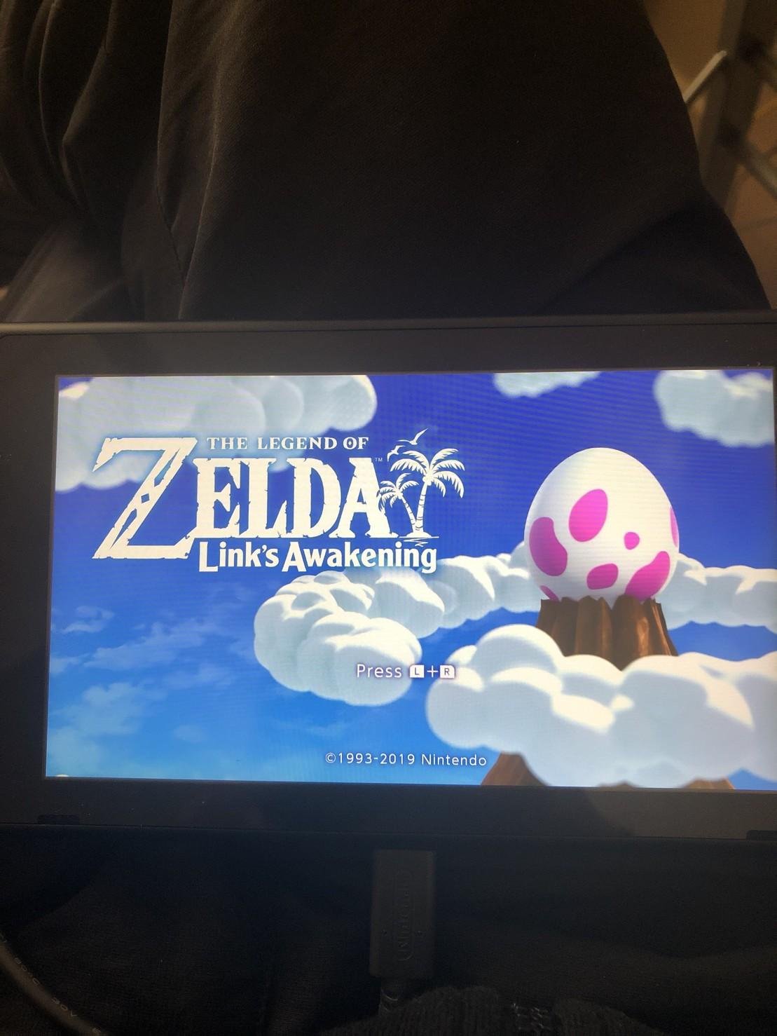 The Legend of Zelda: Link's Awakening screenshot (it really rocks my socks off)