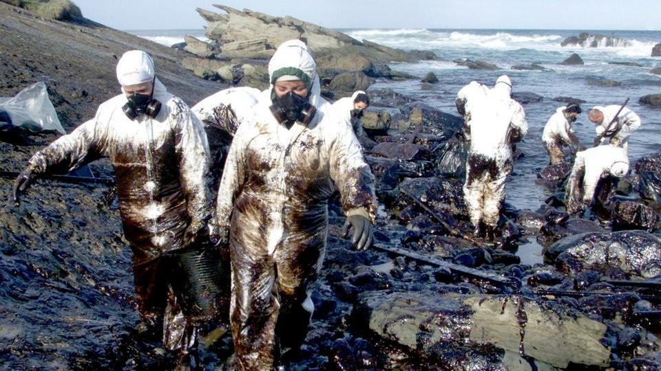 Bild Ölpest