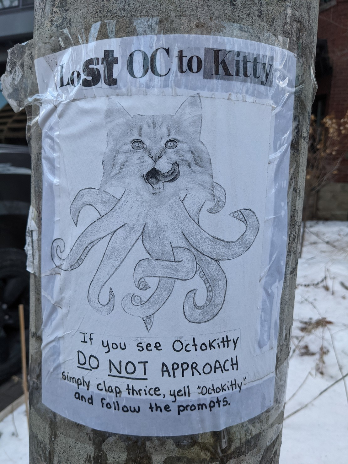 """Sign taped to hydro pole, drawing of cute Octokitty. One cat head, eight tentacles. Text :  Lost octokittty  If you see Octokitty DO NOT APPROACH simply clap thrice, yell """"Octokitty"""" and follow the prompts."""